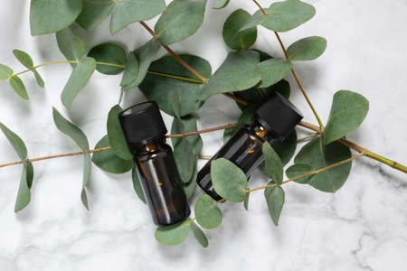 Two amber bottles of eucalyptus essential oil and fresh eucalyptus branch on marble background. Natural cosmetic ingredients for skin care products. Spa, wellness and relaxation. Top view, copy space 写真素材