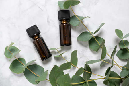 Eucalyptus essential oil bottles and fresh eucalyptus branch on marble background. Natural cosmetic ingredients for skin care products. Spa, wellness and relaxation concept. Top view