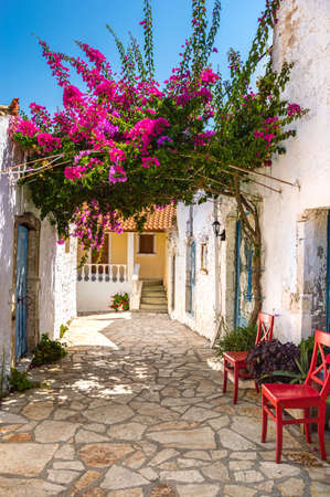 Picturesque street with white ancient greek houses and vibrant flowers of pink bougainvillea in old Afionas village on Corfu island, Greece. Famous touristic destination for summer vacation