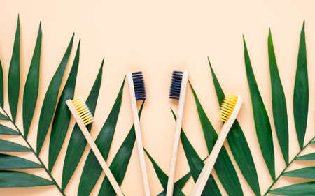 Eco-friendly bamboo toothbrushes and green palm leaves on pastel beige background. Natural wooden tooth brushes as plastic free dental care product. Zero waste, sustainable lifestyle concept