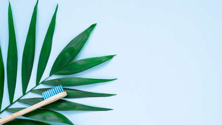 Eco-friendly bamboo toothbrush and green palm leave on pastel blue background. Natural wooden tooth brush as plastic free dental care product. Zero waste, sustainable lifestyle concept, flat lay 写真素材