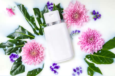 White cosmetics bottle of body lotion, hand or face cream or cleanser in milk water with pink Chrysanthemum flowers and leaves. Organic floral cosmetics. Beauty spa, wellness treatment and skin care