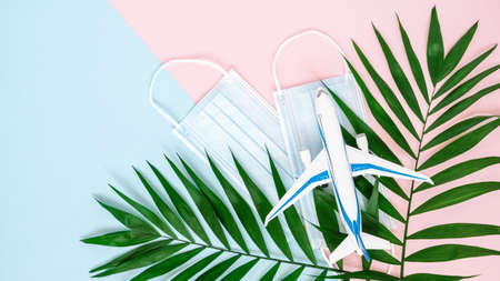 Airplane, medical masks and palm leaves on combined pink and blue background with copy space. Minimal concept of travel and holiday flight restrictions during global coronavirus or Covid-19 epidemic
