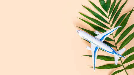 Airplane and palm leaf on neutral beige background with copy space for text. White and blue plane. Summer air travel concept