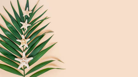 Palm leaf and sea stars on neutral beige background. Exotic tropical summer background. Travel and vacations concept. Top view banner, minimal flat lay, copy space