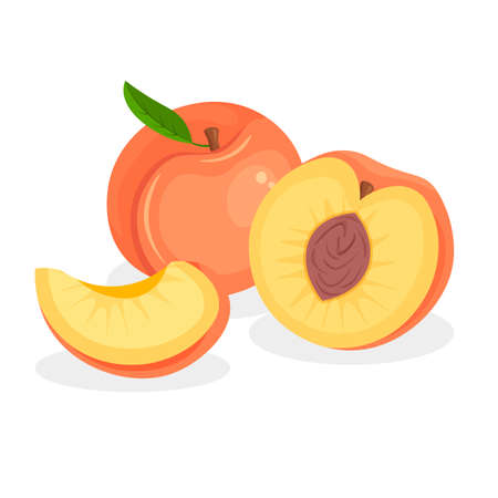 Fresh whole, half, cut slice and piece of peach isolated on white background. Vegan food vector icons in a trendy cartoon style. Healthy concept.