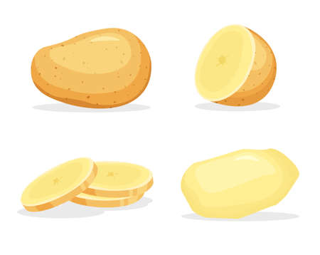Peeled whole and piece of potatoes isolated on white background. Vegan food vector vegetable icons in a trendy cartoon style. Healthy food concept. Vector Illustratie