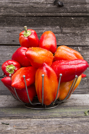 variegated: paprika