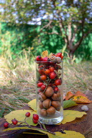 rose hips and hazelnuts in a transparent glass. Autumn still life Stock fotó