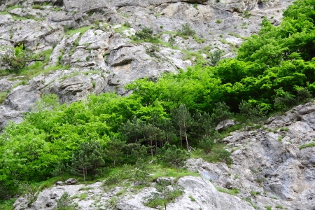 gritty: Image of colorful roughness gritty mountain wall Stock Photo