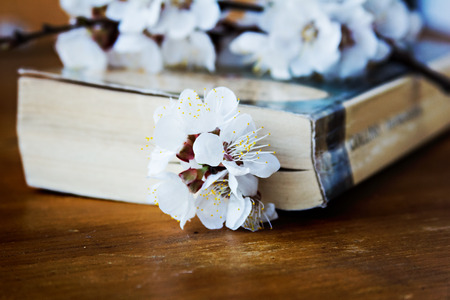 book and blossoming branch on the table photo