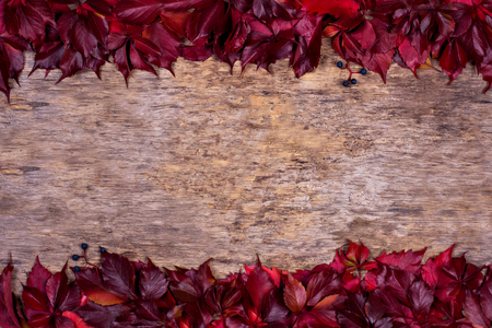 Red autumn leaves on a wooden background. Frame of autumn leaves. Textured vintage rustic wooden background with autumn red leaves.