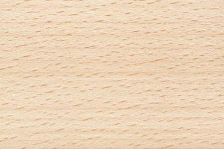 Beech wood texture. Plywood background stripes and dashes. Natural beige color.