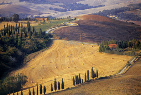 toskana: Tuscan landscape with straw bales and cypressis Stock Photo