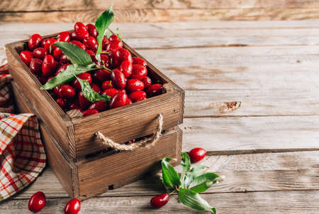 Dogwood berry in a wooden box. Ripe red cornel on rustic wooden background.