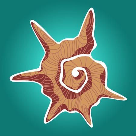 shellfish: Orange shell Illustration