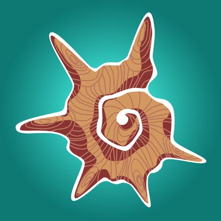 ostracean: Orange shell Illustration