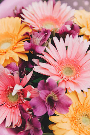 Multicolored Gerbera bouquet. Great decision for design