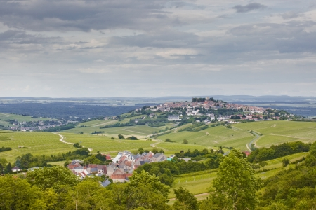 loire: The vineyards of Sancerre in the Loire Valley of France