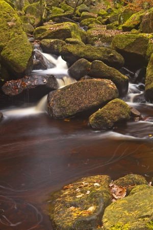 Padley Gorge in the peak District national park, Derbyshire. photo