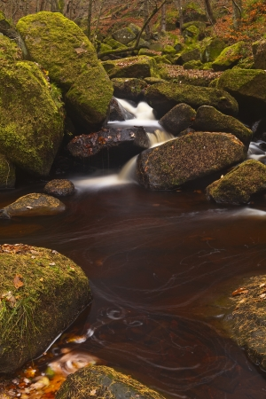 Padley Gorge in the Peak District. photo