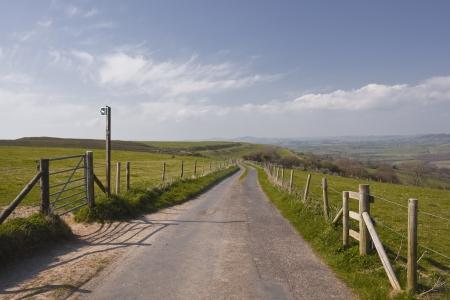 rambling: Looking down the road towards Eggardon Hill in Dorset.