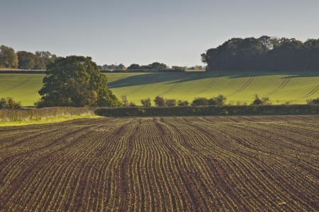 worcestershire: A recently ploughed field near to Naunton in the Cotswolds. Stock Photo