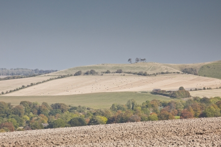wiltshire: The Wiltshire downs near to Pewsey. Stock Photo