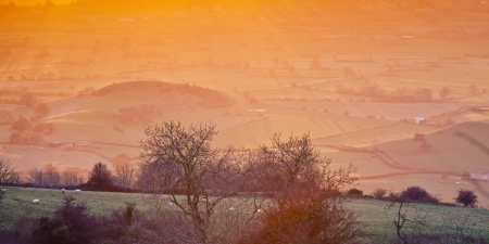 somerset: The Somerset Levels.
