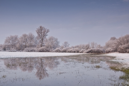 Hoarfrost covers the landscape of the Loire Valley in France.