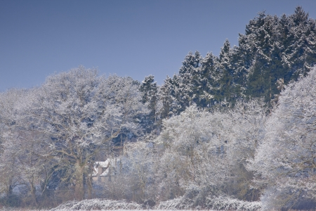 Hoarfrost covers the landscape of the Loire Valley in France. photo