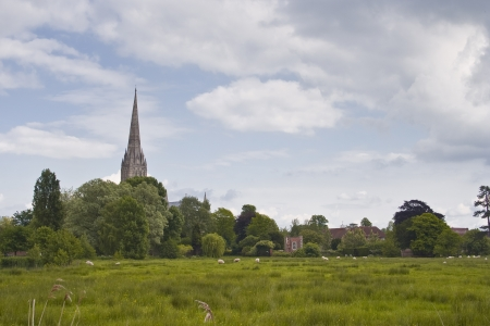 Salisbury cathedral and the west harnham water meadows. photo
