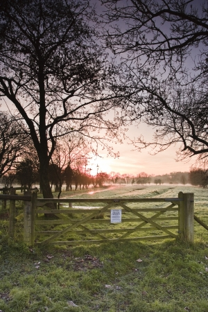 The West Harnham water meadows near to Salisbury, Wiltshire, UK. Stock Photo