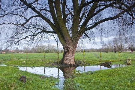 De West Harnham water weiden in de buurt van Salisbury, Wiltshire, UK.