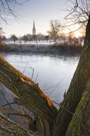 Salisbury cathedral across the water meadows.