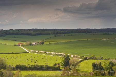 Het platteland van Dorset, Engeland.