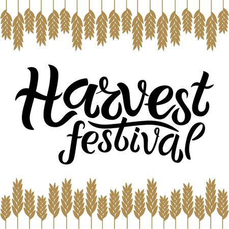 Vector illustration of Harvest festival text decorated with ears of wheat. Hand drawn lettering for harvest festival. Isolated autumn card, poster or banner template with calligraphic text. Çizim