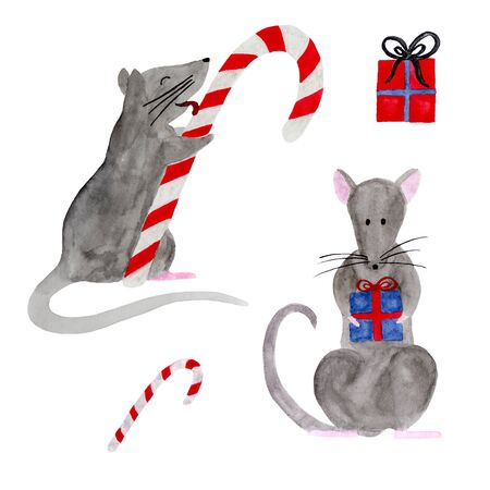 Watercolor set of Christmas rats isolated on white background. Hand drawn 2020 symbol animal. Zodiac rat holding gift box and licking candy cane. New Year postcard, poster, calendar, textile print.