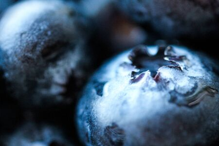 Background with fresh blueberries closeup. Blueberry macro photography. Organic berries of bright blue color. Template for banner, menu, food label, organic shop. Healthy eating. Blurred background