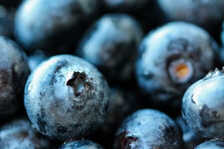 Background with fresh blueberries closeup. Blueberry macro photography. Organic berries of bright blue color. Template for banner, menu, food label, organic shop, garden harvesting. Healthy eating