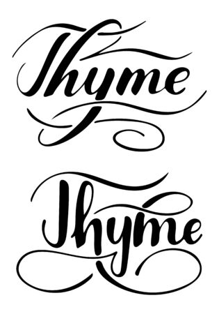 Vector hand written thyme text isolated on white background. Kitchen healthy herbs and spices for cooking. Script brushpen lettering with flourishes. Handwriting for banner, poster, product label Çizim