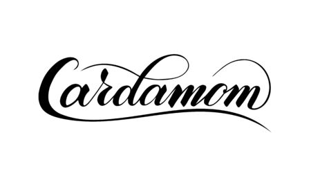 Vector hand written cardamom text isolated on white background. Kitchen healthy herbs and spices for cooking. Script brushpen lettering with flourishes. Handwriting for banner, poster, product label Ilustracja