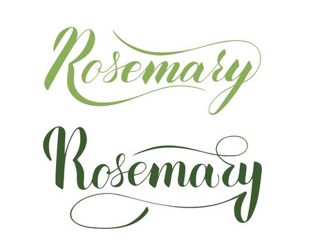 Vector hand written rosemary text isolated on white background. Kitchen healthy herbs and spices for cooking. Script brushpen lettering with flourishes. Handwriting for banner, poster, product label