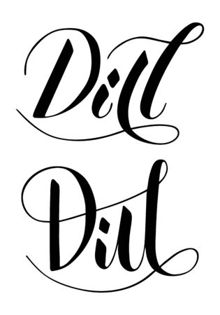 Vector hand written dill text isolated on white background. Kitchen healthy herbs and spices for cooking. Script brushpen lettering with flourishes. Handwriting for banner, poster, product label Ilustração