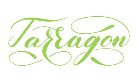 Vector hand written tarragon text isolated on white background. Kitchen healthy herbs and spices for cooking. Script brushpen lettering with flourishes. Handwriting for banner, poster, product label