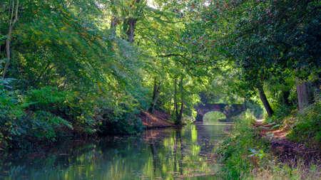 Autumn sunlight on the Basingstoke Canal near Stacey's Bridge, Hampshire, UK