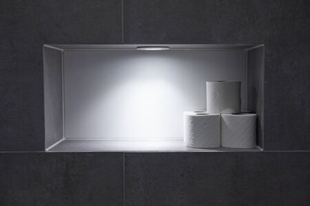 Toilet rolls in a recess in the wall with top lighting in sterile setting