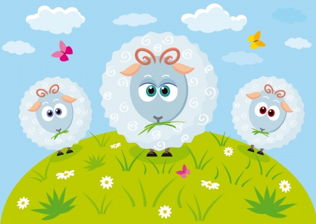 flock of sheep: Illustration of three cute and funny lamb in the meadow