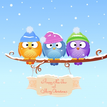 snow cap: christmas bird Stock Photo