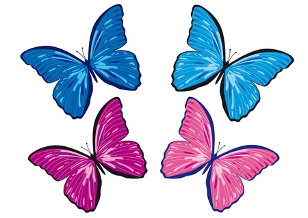 free backgrounds: butterfly 4